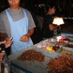 street stall of crickets, meal worms and cicada's